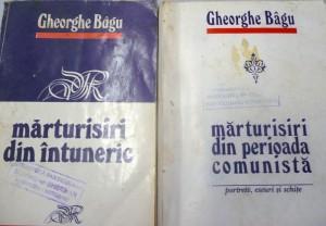 Gh-Bagu,cartile-sale [800x600]