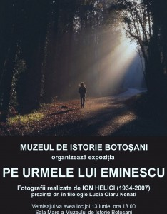 afis eminescu