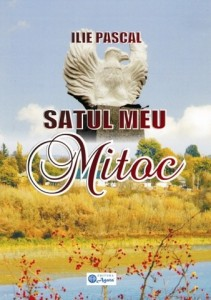 Satul meu - Mitoc, Ilie Pascal [640x480]
