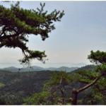 Poezie clasică coreeană