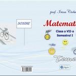MATEMATICA. Clasa a VII-a: TEME, autor Irina CIOBANU