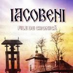"""Arena scriiturilor: Constantin Adam și ,,Iacobeni - file de cronică"""""""