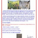 CATREN UMORISTIC: PAUL-MIRCEA IORDACHE