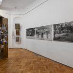 """O nouă expoziție marca """"Hidden Galleries"""" la Biblioteca Boole a celebrului Colegiu Universitar din Cork (Irlanda)"""